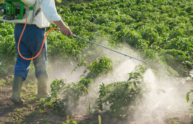 Syngenta secures nearly $1m in pesticide suit