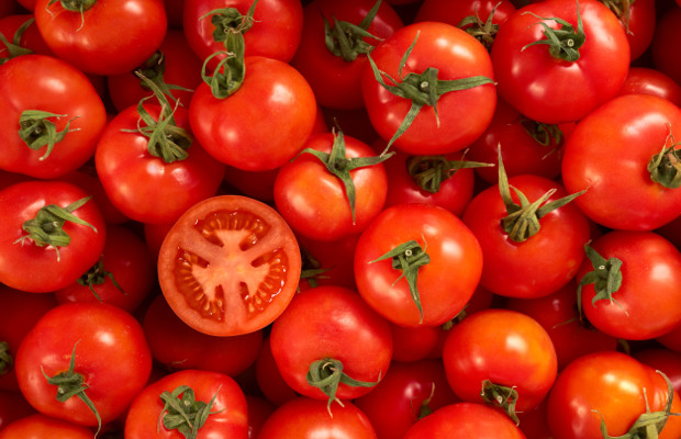 DNA from tomatoes could prevent counterfeit breast implants, say researchers