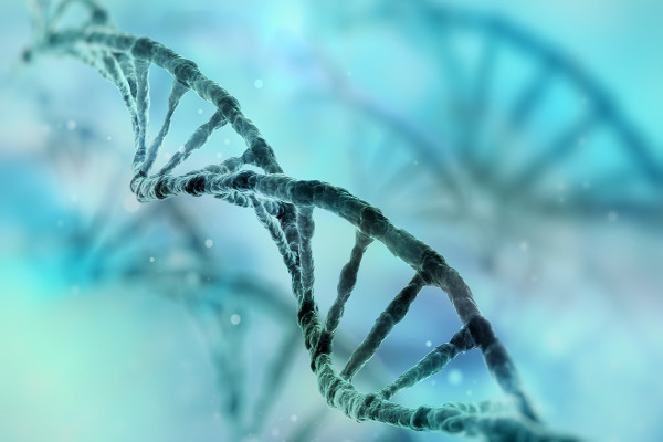 Clearing a way through the CRISPR patent jungle
