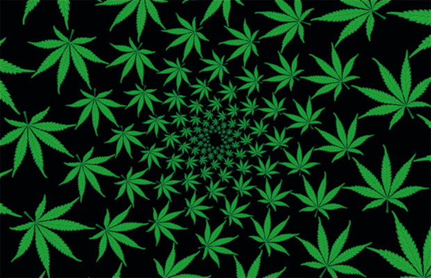 Mulling the future for marijuana IP