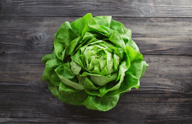 Activist group opposes lettuce patent