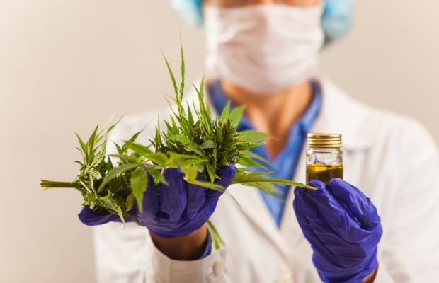 Medicinal Cannabis: what next for Brazil?