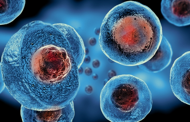 FDA warns stem cell company over unapproved treatments