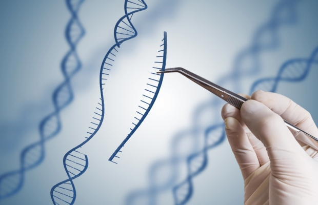 LSIPR webinar: No end in sight for CRISPR IP saga, says HGF